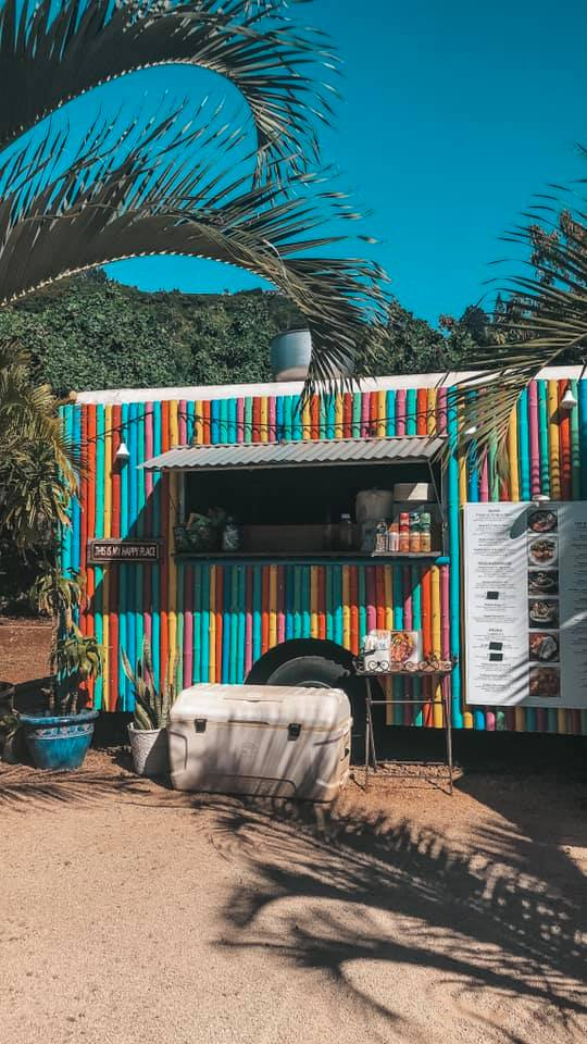 colorful food truck surrounded by palm trees