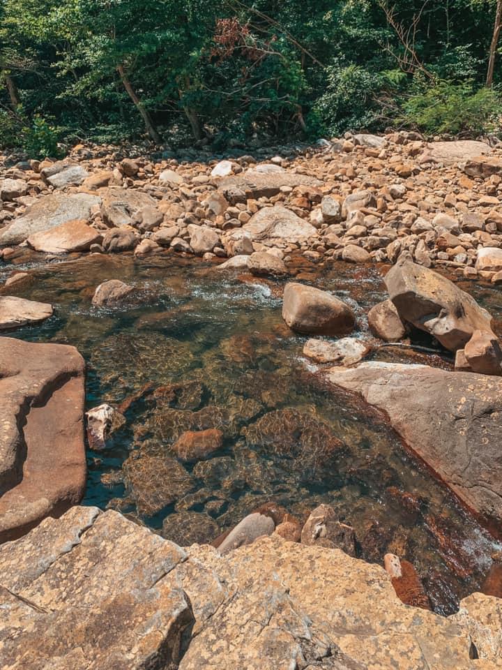 North Chickamunga Conservation