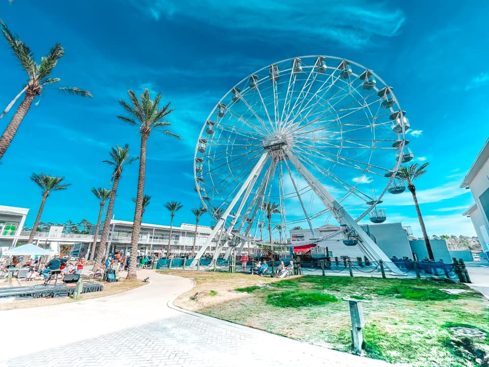 Ferris wheel and palm trees at The Wharf